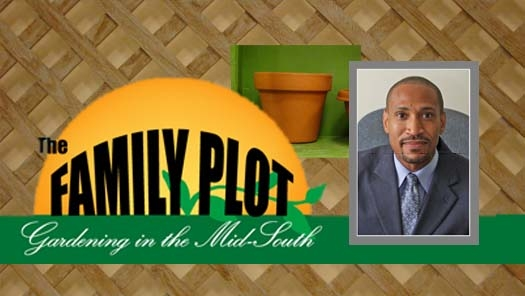 The Family Plot - Gardening in the Mid-South WKNO TV